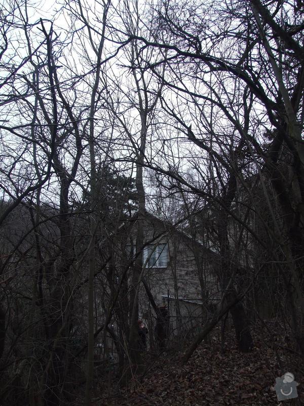Kácení stromu pomocí horolezecké techniky: Kavci_hory_002