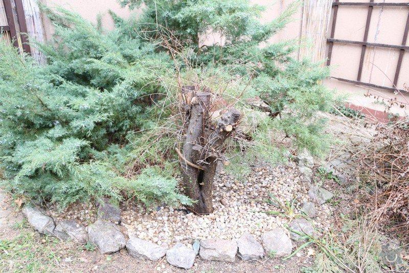 Zahradnicke prace: kmen_res