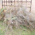 Zahradnicke prace nalet 01