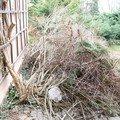 Zahradnicke prace nalet 02
