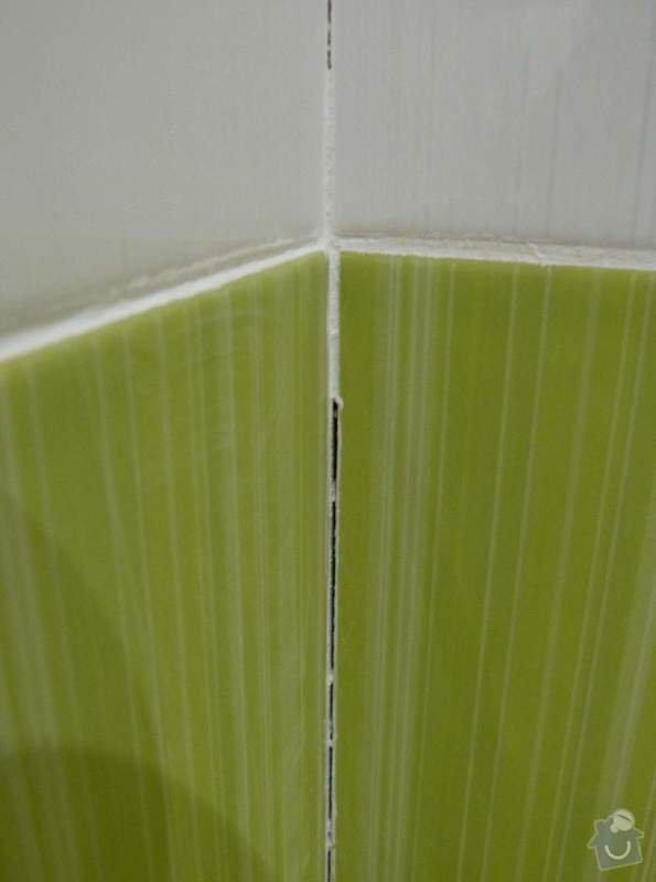 Obklady a dlažba v koupelně, dlažba v předsíni.: P1250924
