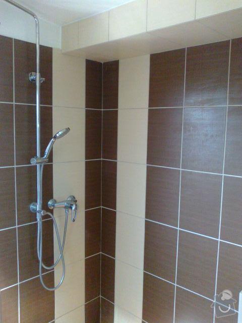 Rekonstrukce koupelny: 260320141