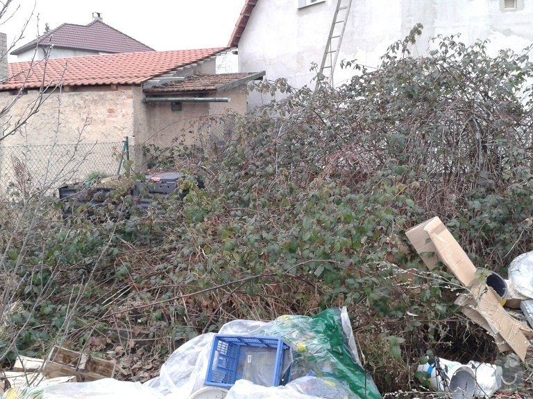 Úprava zanedbané zahrady: Ext_13