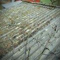 Rekonstrukce strechy p3230861