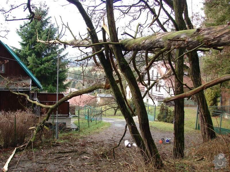 redukční prořez 3 dubů: 003