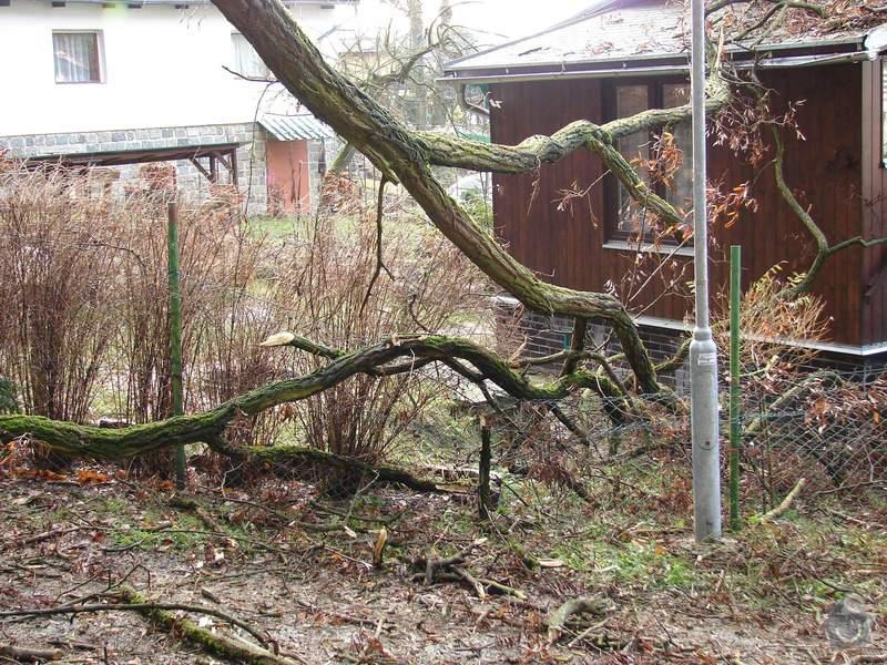redukční prořez 3 dubů: 011