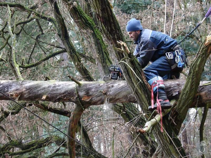 redukční prořez 3 dubů: 029