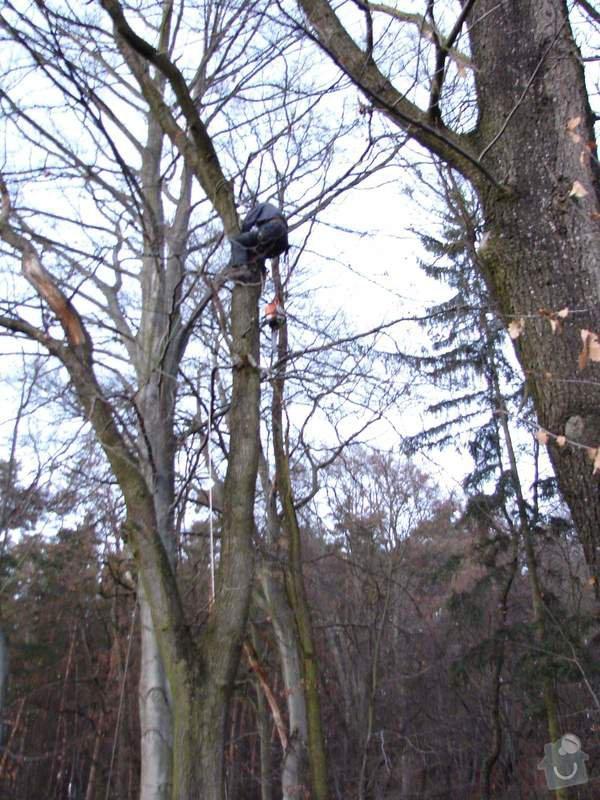 redukční prořez 3 dubů: 044