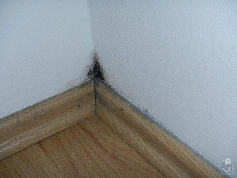 Malířské práce (1 pokoj po vytopení vodou): DSCN8310
