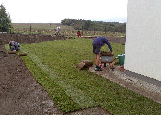 Založení trávníku 320m2 (výsev nebo pokládka koberce)
