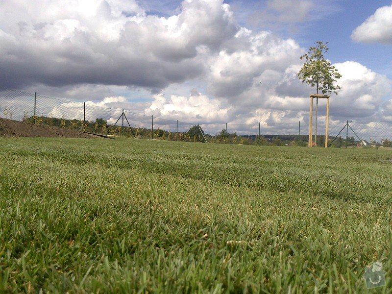 Založení trávníku 320m2 (výsev nebo pokládka koberce): 2013-09-12_12.30.22