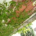 Oprava balkonu 20140427 143930