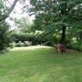 Uprava a revitalizace zahrady po dokoncene rekonstrukci domu p8010120