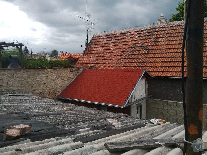 Střecha na zahradní domek + plot: IMG_20140511_150826