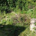 Zahradnicke prace img 0499
