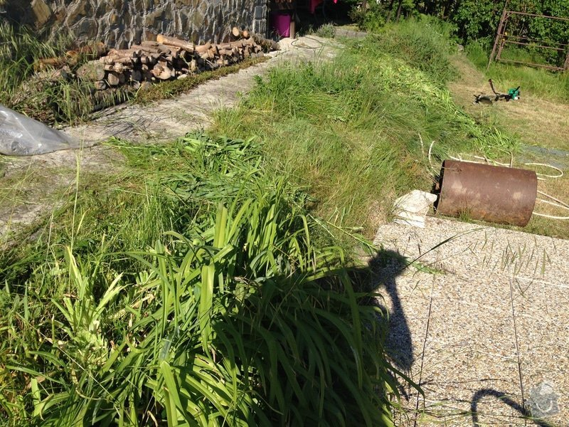 Zahradnické práce: IMG_0503