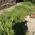 Zahradnicke prace img 0503