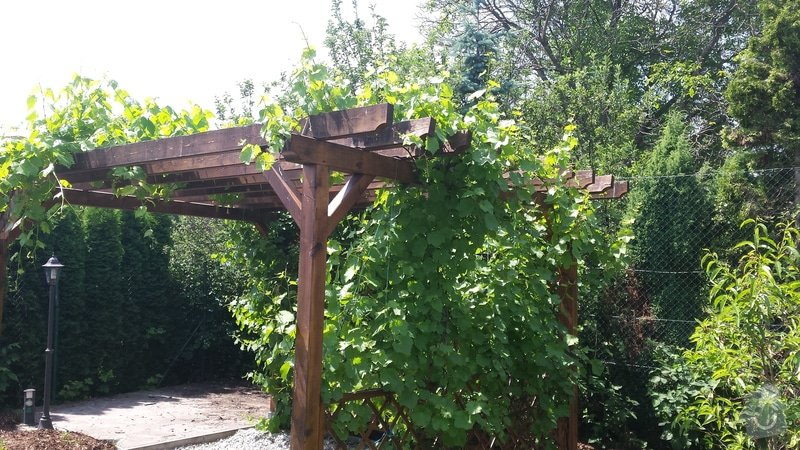 Lakýrnické práce - nátěr plotových latěk: 20140611_124825