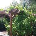 Lakyrnicke prace nater plotovych latek 20140611 124825