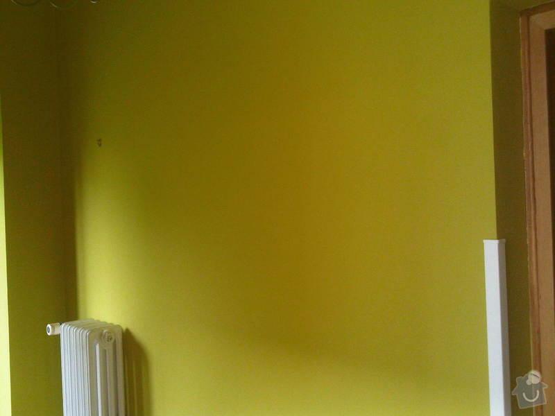 Malířské práce: IMG00244-20140617-0915