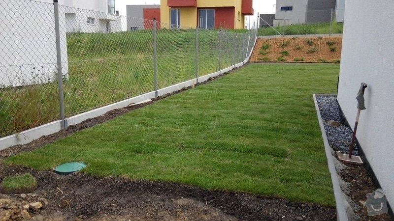 Založení zahrady u nového RD: 20.Reporyje_pan_Dvorak