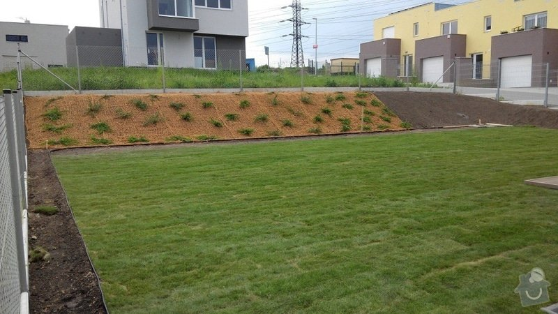 Založení zahrady u nového RD: 21.Reporyje_pan_Dvorak