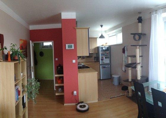 Vymalování bytu 57 m2