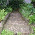 Oprava chodnicku schodiste zvyseni zidky betonovani zabradli  dlouhe schody 3