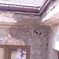 Fasadu bytoveho domu imag0732