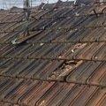 Havarijni oprava strechy strecha provaz. 17 img 2098