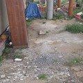 Zamkova dlazba u rodinneho domu img 7588