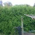 Zahradnicke sluzby wp 20140805 008