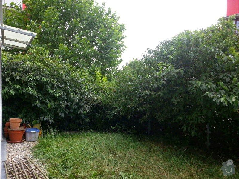Zahradnické práce -úprava předzahrádky 34m2 Beroun : 20140809_152056