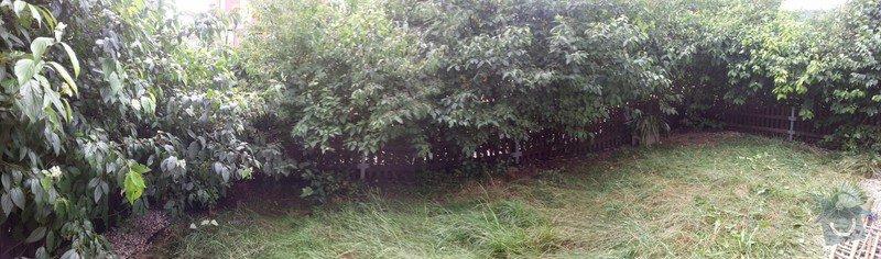 Zahradnické práce -úprava předzahrádky 34m2 Beroun : 20140809_152155