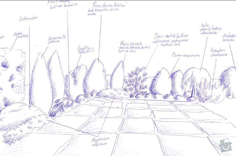 Realizace zahrady se stavebními prvky: zahrada_rostliny