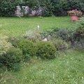 Zahradnicke sluzby prostrih keru uprava skalky vysazeni novyc obr2 skalka