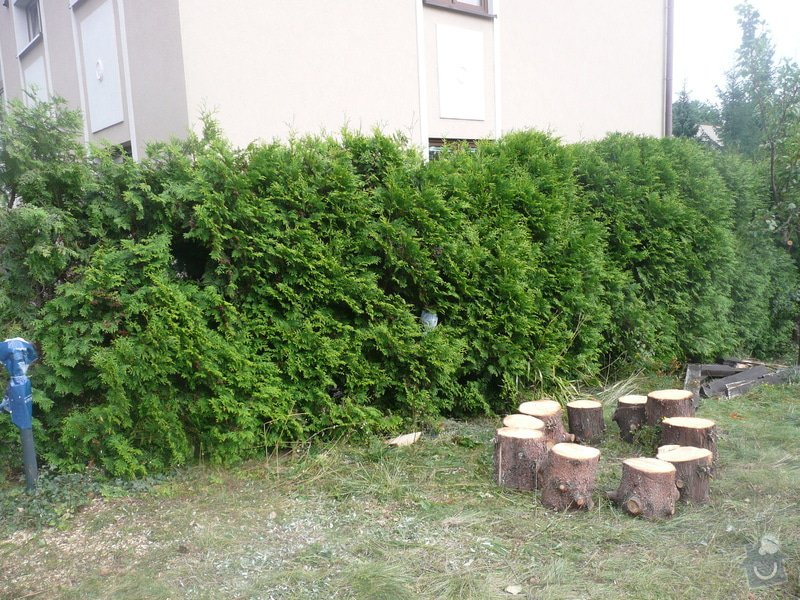 Poptavam zahradnicke prace: P1070281