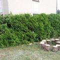 Poptavam zahradnicke prace p1070281