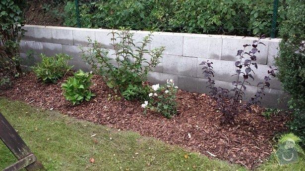 Zahradnické služby, prostřih keřů, úprava skalky, vysazení nových keřů: 20140906_175244