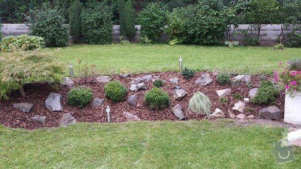 Zahradnické služby, prostřih keřů, úprava skalky, vysazení nových keřů: 20140906_175219