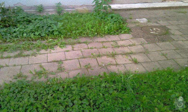 Předláždění bytového chodníku: IMAG1020