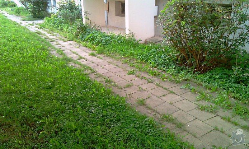 Předláždění bytového chodníku: IMAG1021