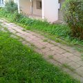 Predlazdeni bytoveho chodniku imag1021