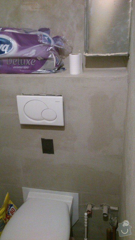 Obložení koupelny a toalety: DSC_0347