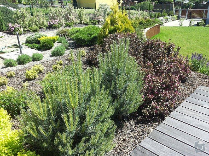 Návrh a realizace zahrady: 20140609_151308