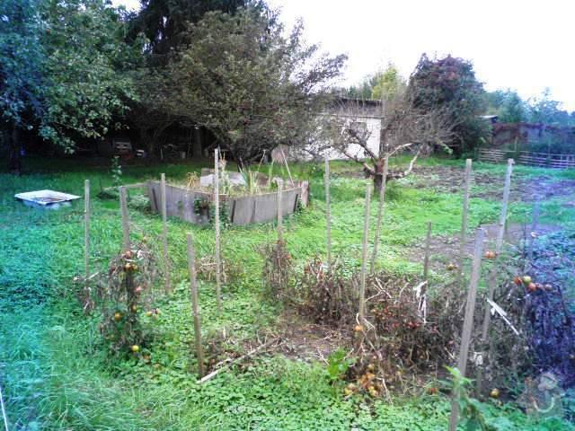 Zahradnické práce: P9250004