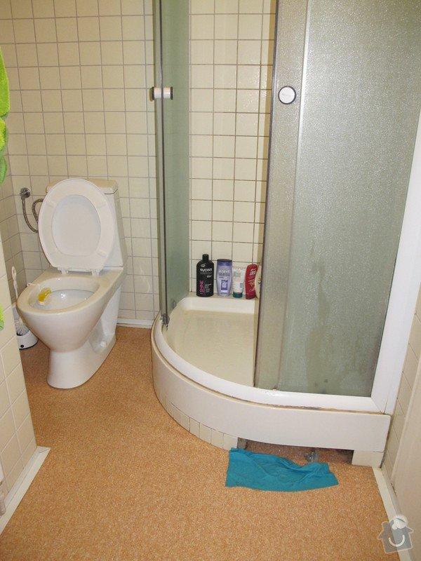 Menší rekonstrukce koupelny / resp. oprava odpadu sprchového koutu: IMG_0013