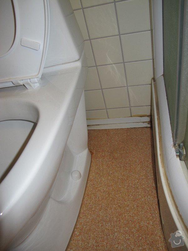 Menší rekonstrukce koupelny / resp. oprava odpadu sprchového koutu: IMG_0018