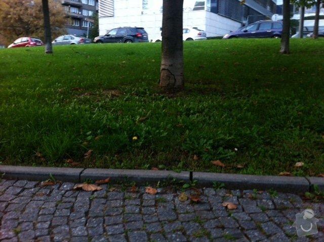 Výměna chodníkových obrubníků v parku: obrazek