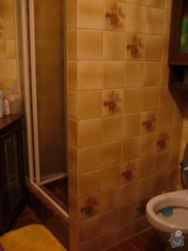 Rekonstrukce koupelny: P1040995